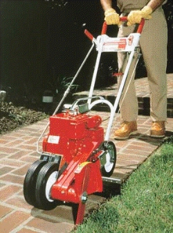 Rental store for GAS LAWN EDGER in Santa Cruz CA
